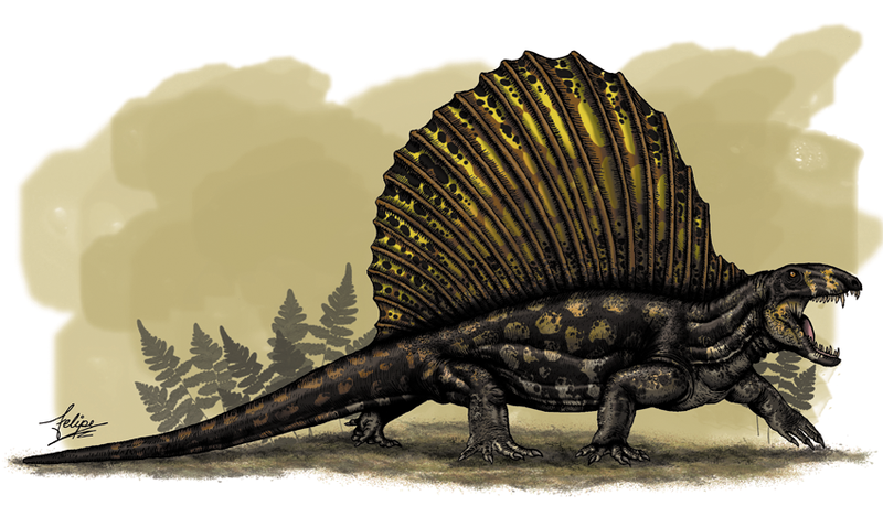 Ouranosaurus Was A Hadrosaur Duck Billed Dinosaur With Sail Like Fin On Its Back