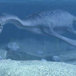 1361_plesiosaurus_vojislav_vukadin