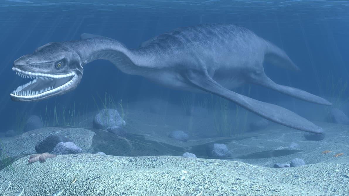 Plesiosaurus by Vojislav Vukadin