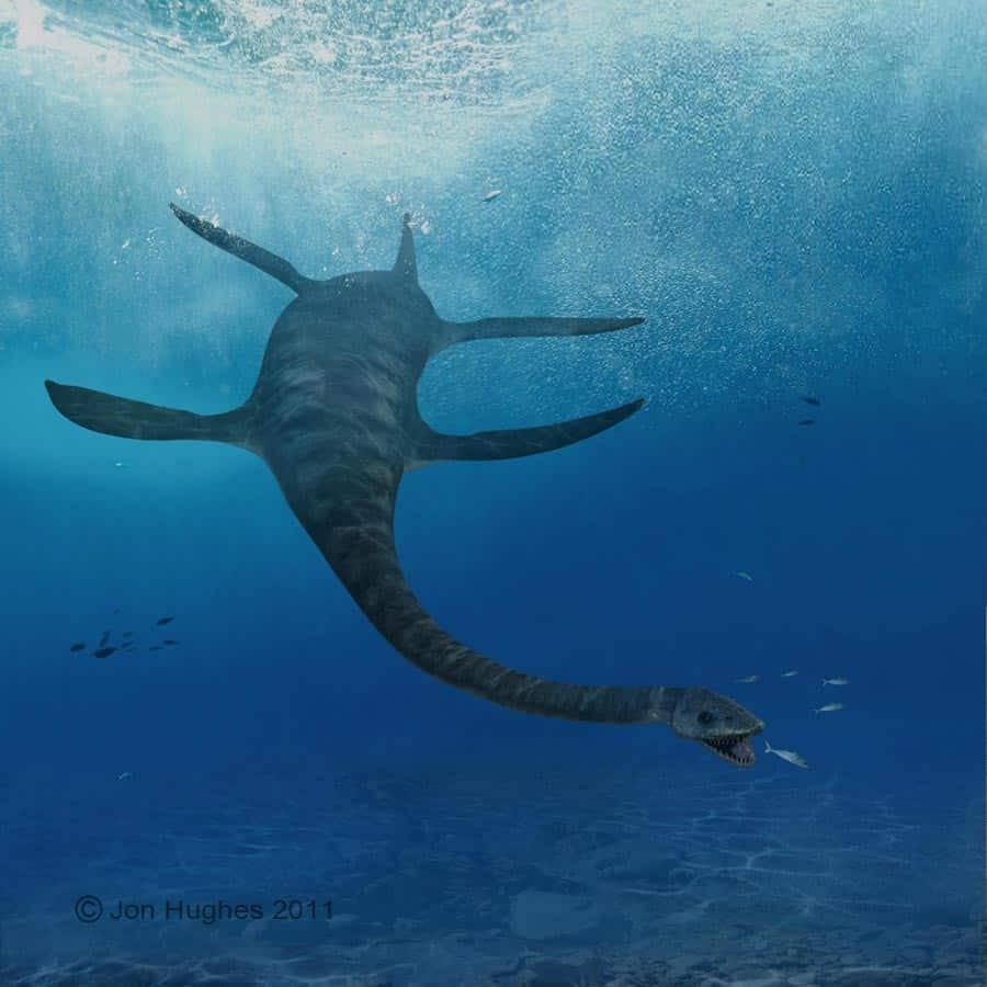 Futabasaurus by JON HUGHES