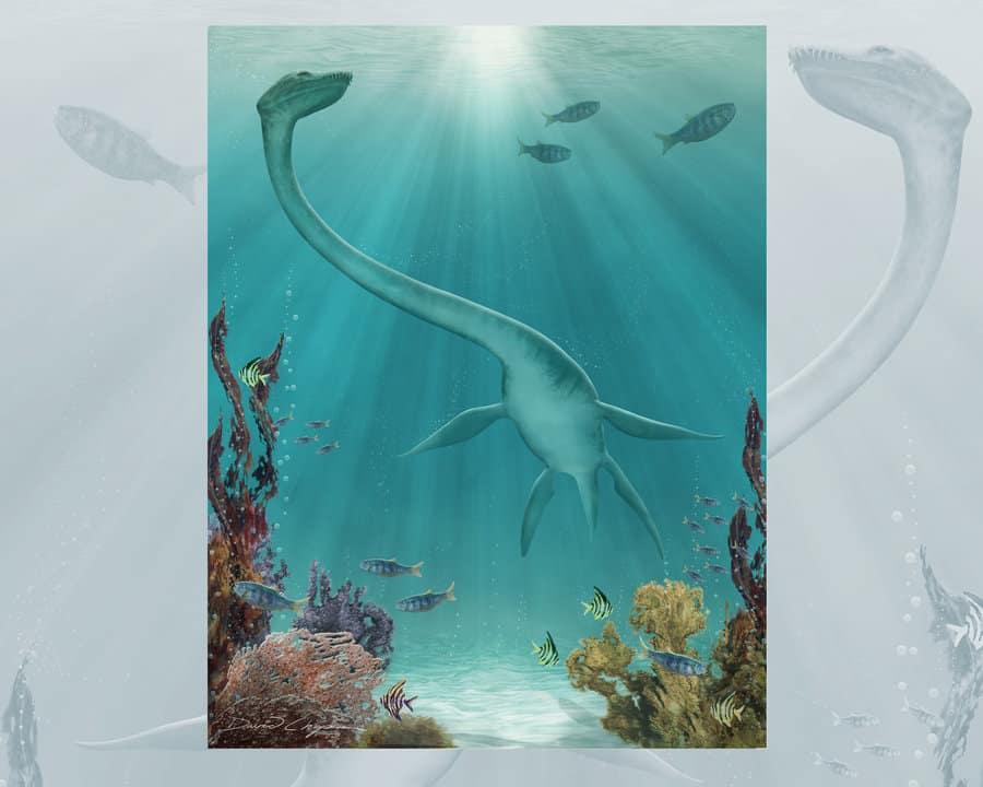 Futabasaurus by David C. Chapman