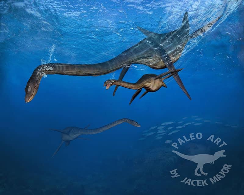 Styxosaurus by Jacek Major