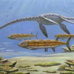1385_styxosaurus_andrej_belov