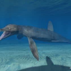 1386_pliosaurus_nobu_tamura