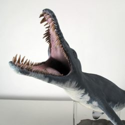 1390_pliosaurus_thomas