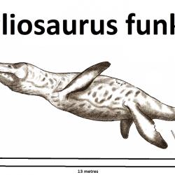1391_pliosaurus_robinson_kunz