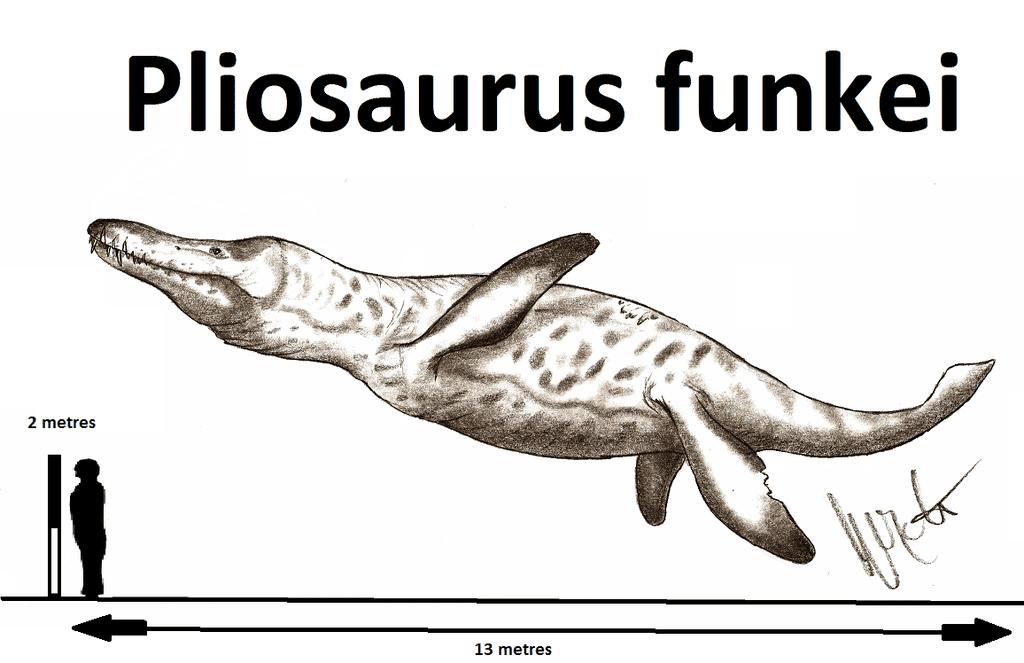Pliosaurus by Robinson Kunz