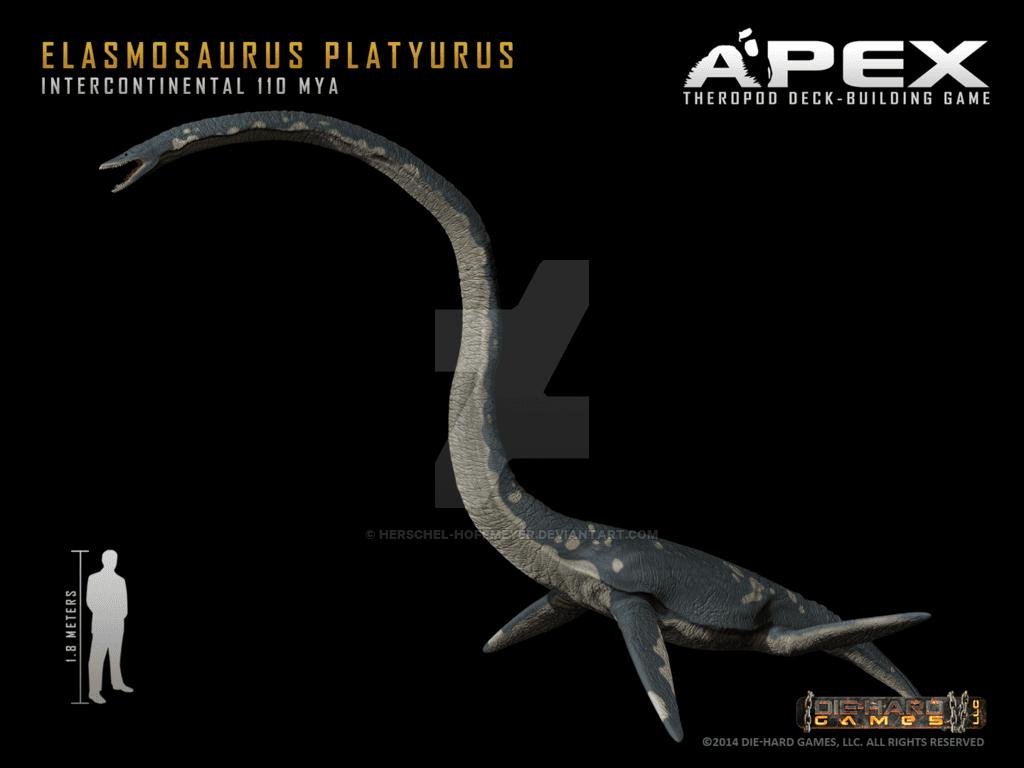 Elasmosaurus by Herschel Hoffmeyer