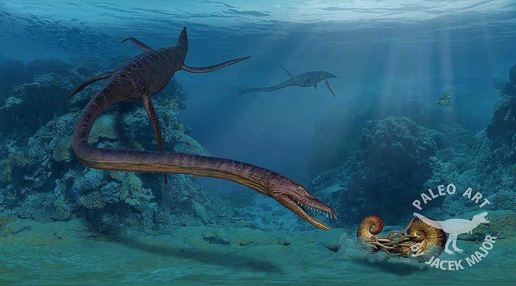 Elasmosaurus by Jacek Major