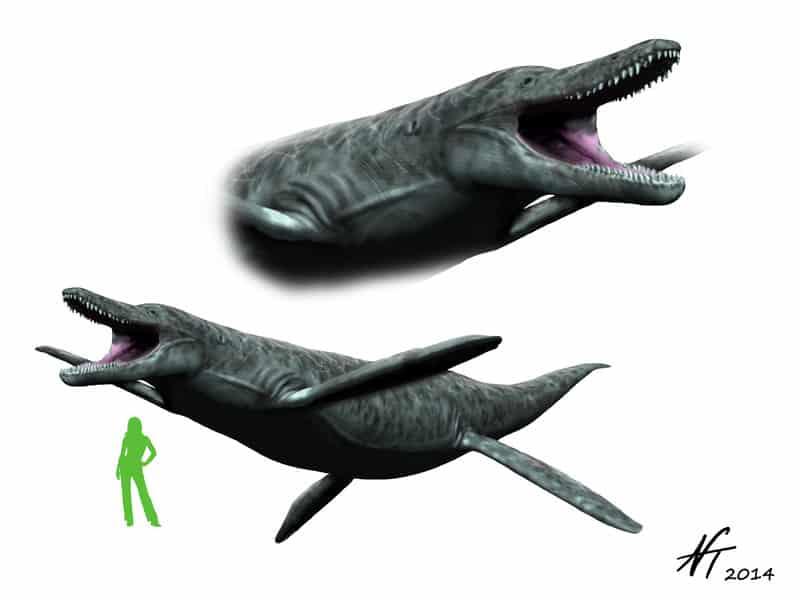 Kronosaurus by Nobu Tamura