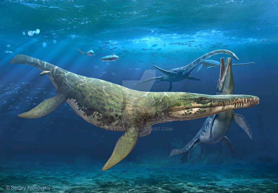 Kronosaurus by Sergey Krasovskiy