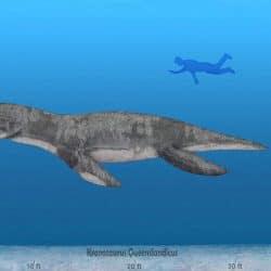 1405_kronosaurus_sameerprehistorica
