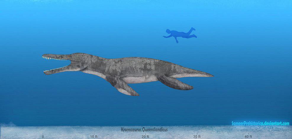 Kronosaurus by SameerPrehistorica