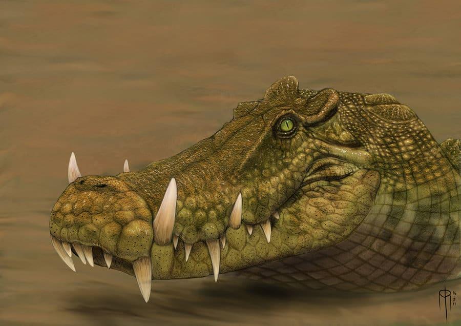 Kaprosuchus by alvaro Rozalen