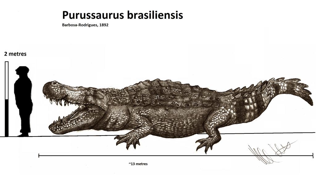 Purussaurus by Robinson Kunz