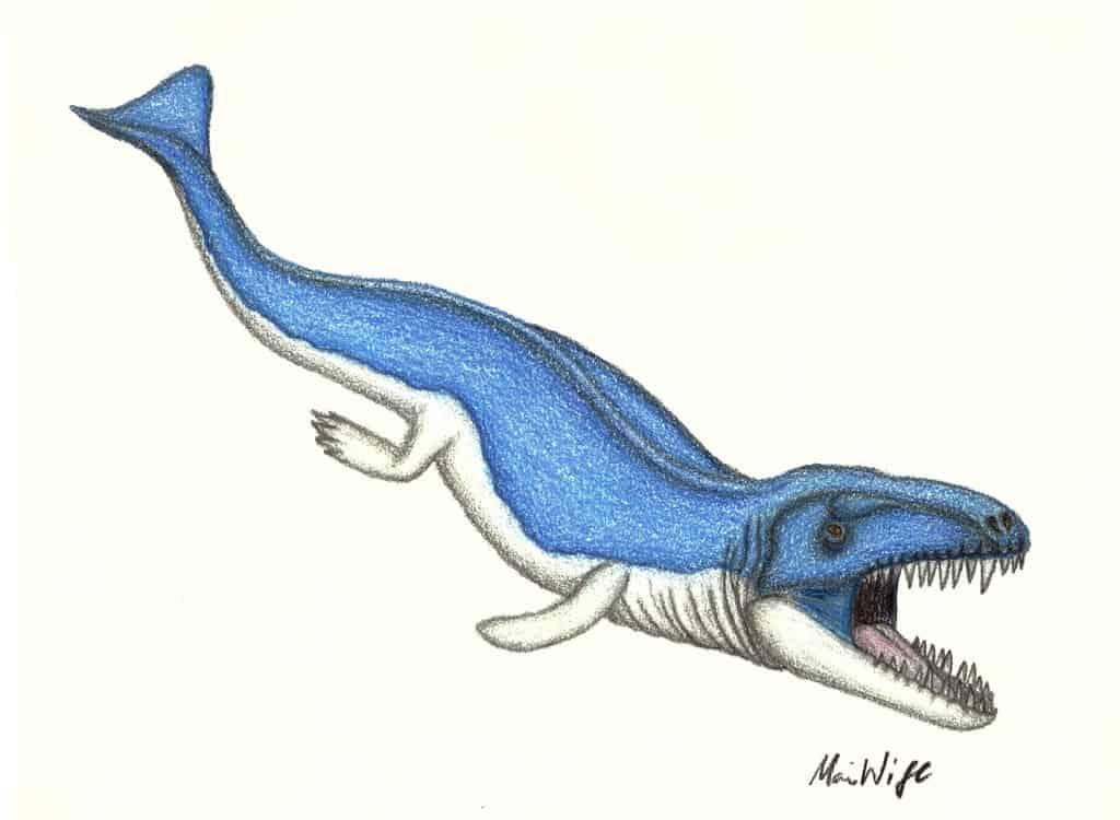 Dakosaurus by Arcovenator