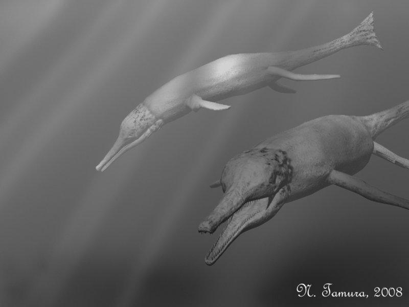Metriorhynchus by Nobu Tamura