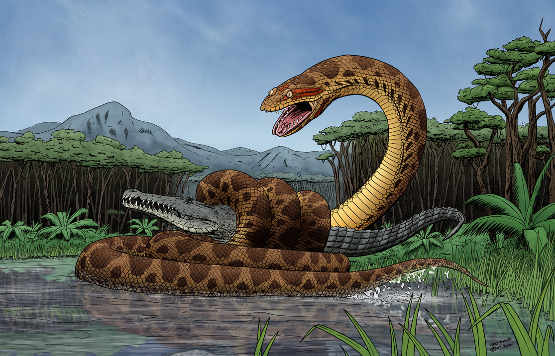 Titanoboa by Darren Pepper
