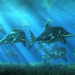 1479_ichthyosaurus_daniel_eskridge