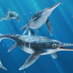 1483_ichthyosaurus_felipe_arias