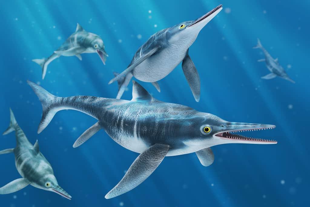 Ichthyosaurus by Felipe Arias