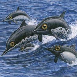 1485_ichthyosaurus_esther_van_hulsen
