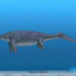 1489_shonisaurus_sameerprehistorica