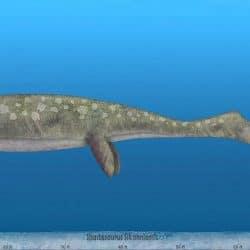 1494_shastasaurus_sameerprehistorica