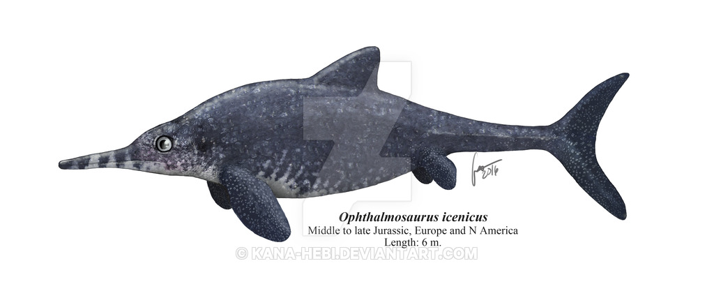 Ophthalmosaurus by Gabriel