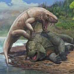 1519_scutosaurus_sergey_krasovskiy