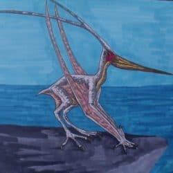 1525_nyctosaurus_tim_deceuninck