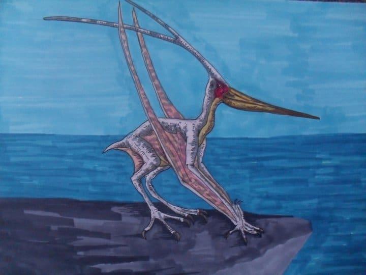 Nyctosaurus by Tim Deceuninck