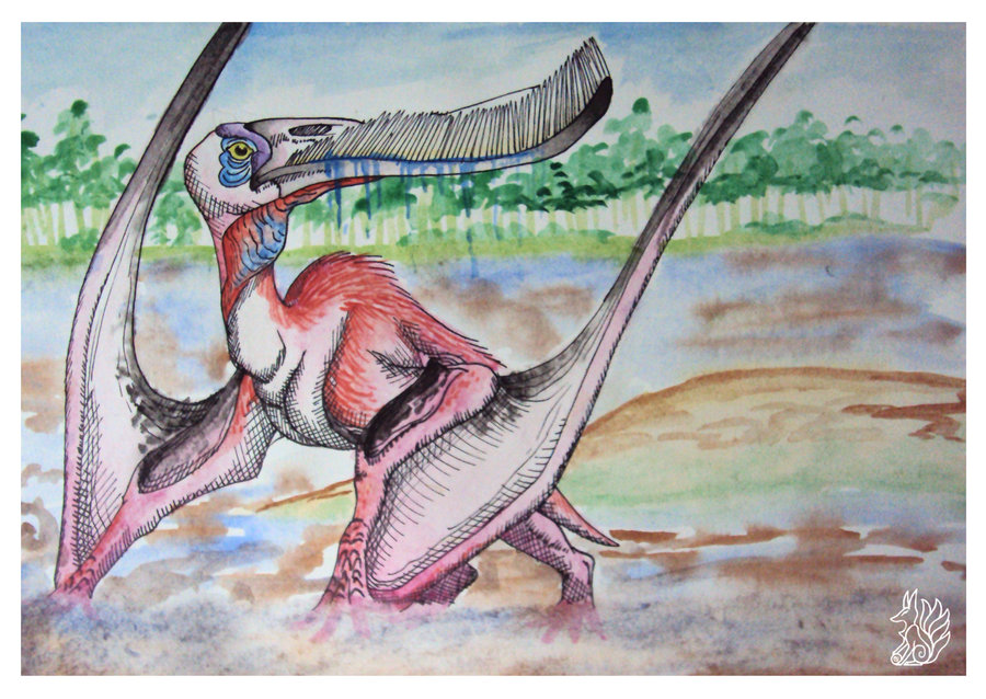 Pterodaustro by Tsuani