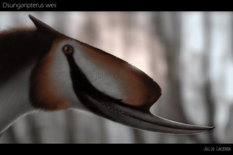 Dsungaripterus by Julio Lacerda