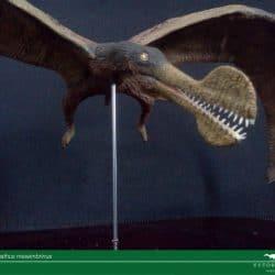 1549_tropeognathus_jose_vitor_e._da_silva