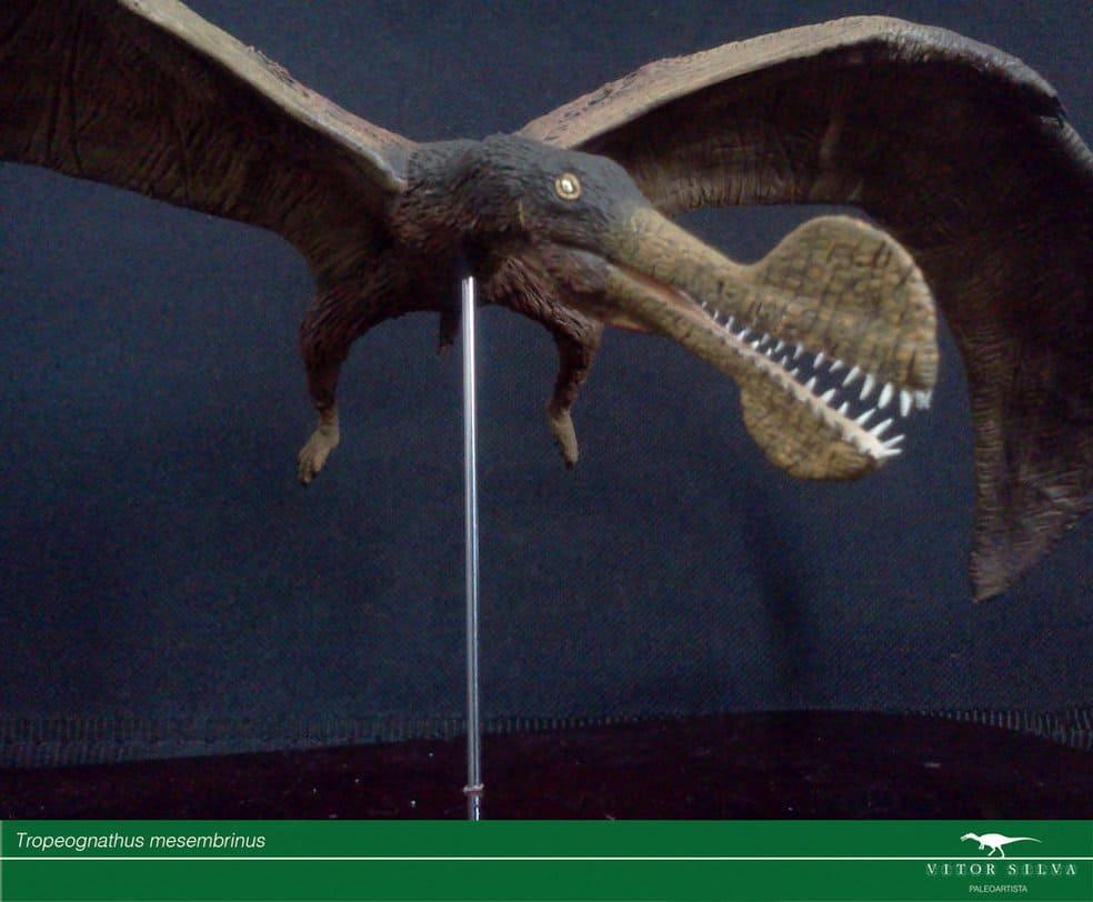 Tropeognathus by Jose Vitor E. Da Silva