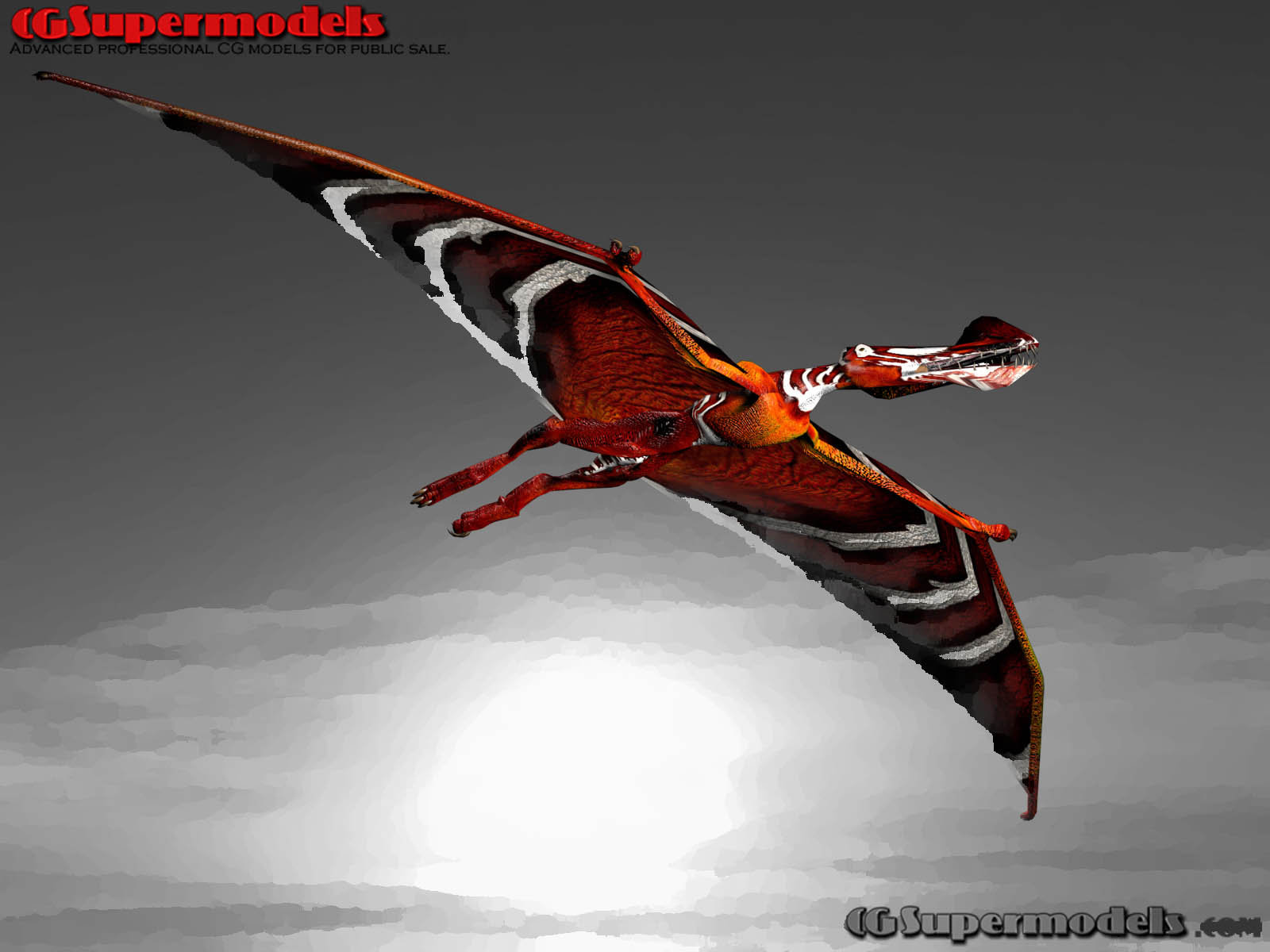 Tropeognathus by Ryan
