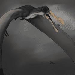 1560_ornithocheirus_veronika