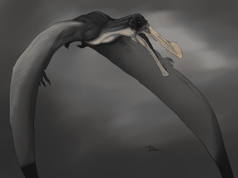 Ornithocheirus by Veronika