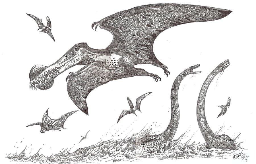Ornithocheirus by HodariNundu