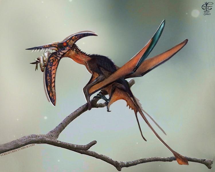 Rhamphorhynchus by Vincent