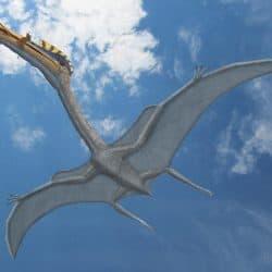 1574_hatzegopteryx_peter_montgomery