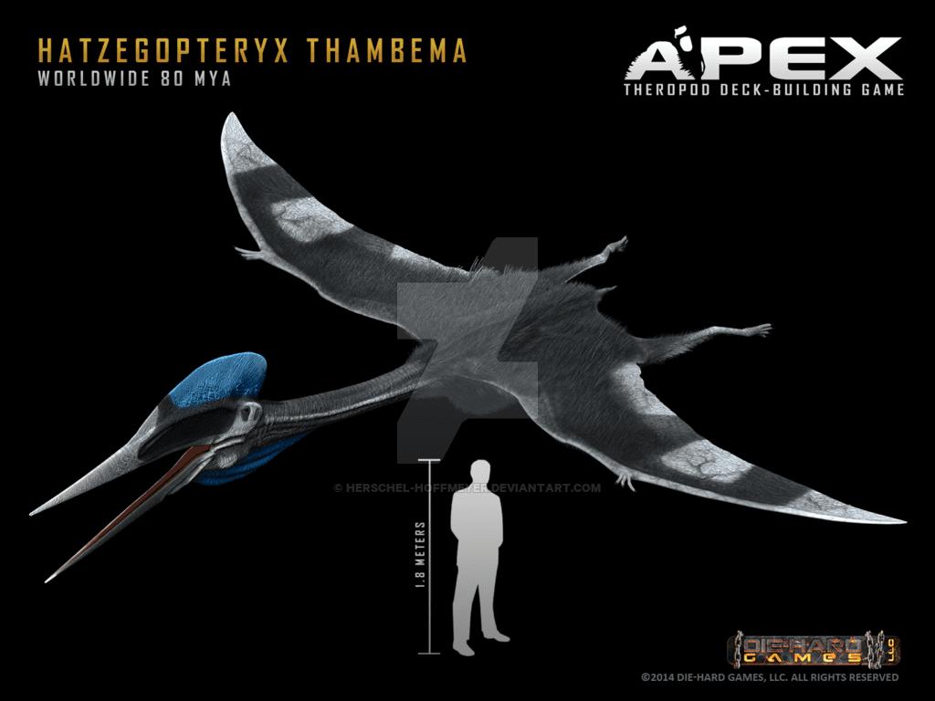 Hatzegopteryx by Herschel Hoffmeyer