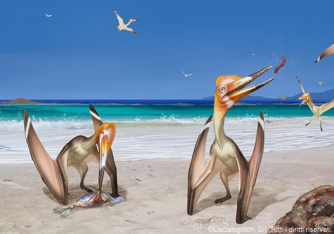 Pterodactylus by Akeiron