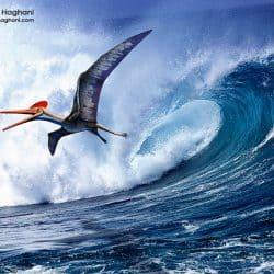 1588_pterodactylus_mohamad_haghani