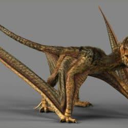 1591_dimorphodon_sascha_kozacenko