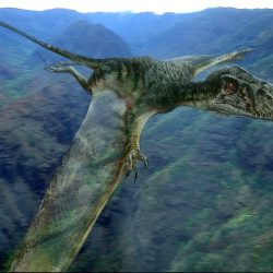 1594_dimorphodon_will_brennan