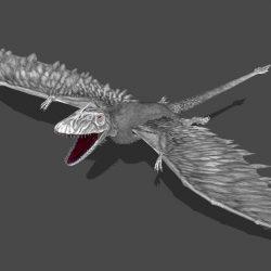 1595_dimorphodon_val