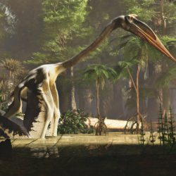 1596_quetzalcoatlus_james_kuether