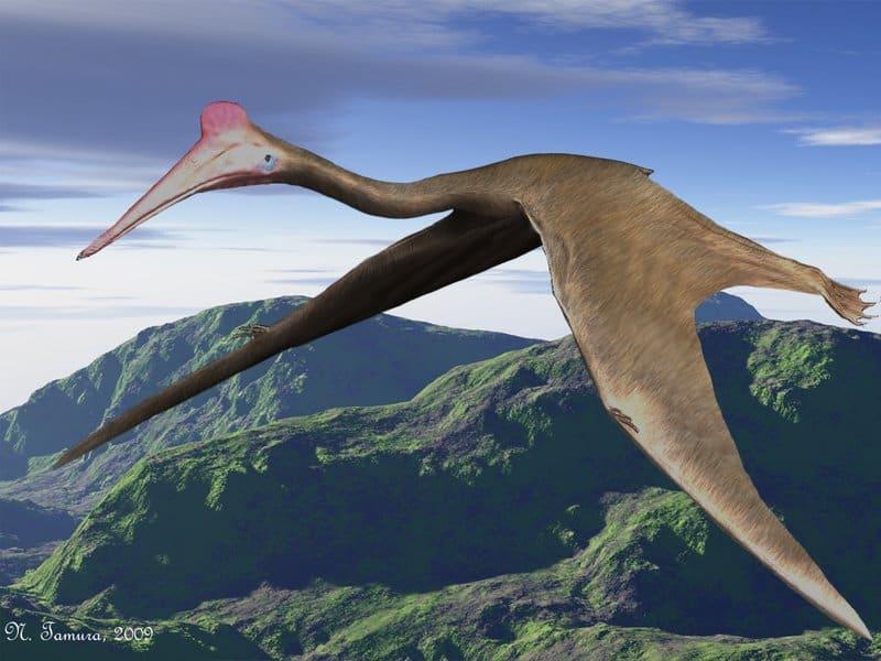 Quetzalcoatlus by Nobu Tamura
